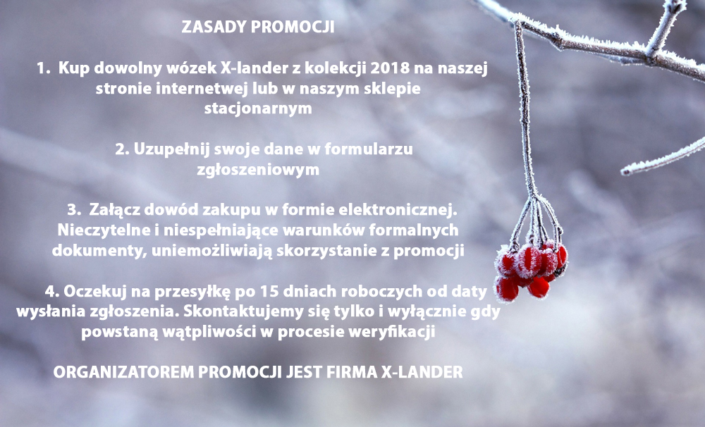 https://img.megaurwis.pl/nowy1/xlander/promocja/3.jpg